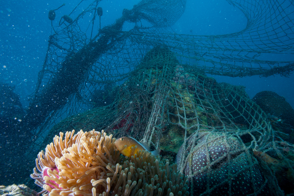 ghost-net-on-coral
